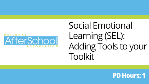 social Emotional Learning webinar - professional development