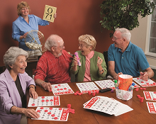 bingo activities seniors